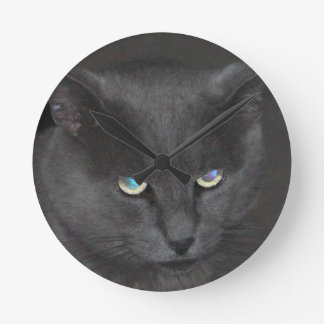 Fun Grey Kitty Cat w/ Colored Eyes Round Clock