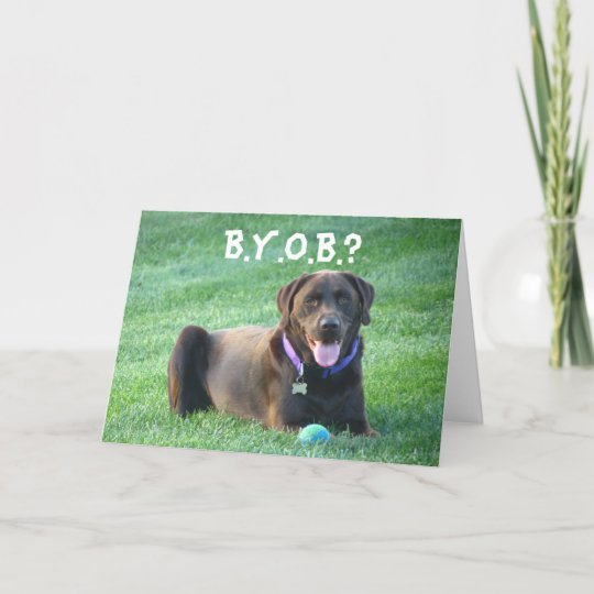 Fun Happy Birthday Greeting Card 4 Dog Lovers