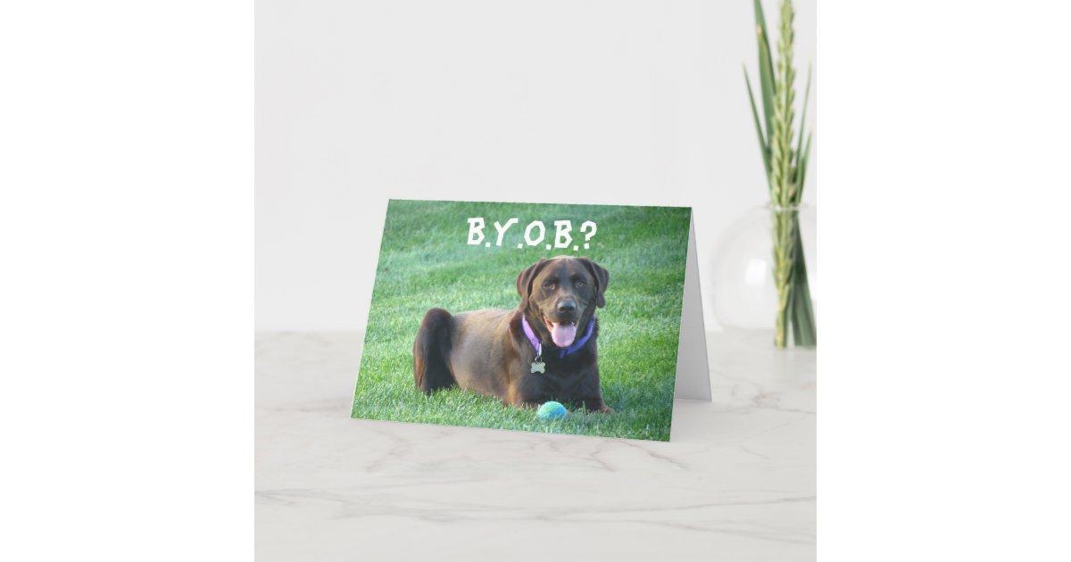 Fun Happy Birthday Greeting Card 4 Dog Lovers Card Zazzle Com
