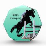 Fun Horse Jumper Awards