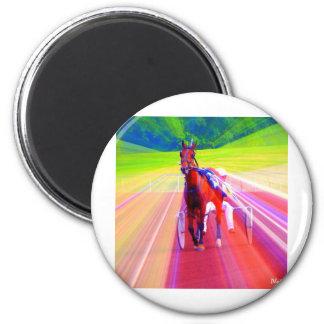 fun horse magnet