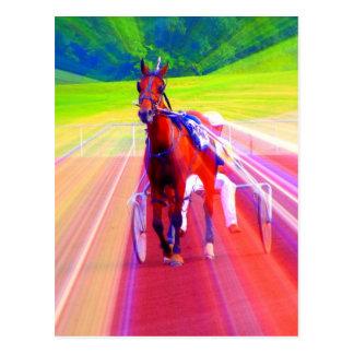 fun horse postcard