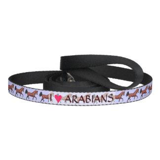 Fun I Love Arabians Trotting Bay Horse Dog Leash