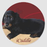 Fun iCuddle Long Hair Dachsund Classic Round Sticker
