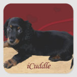 Fun iCuddle Long Hair Dachsund Square Sticker