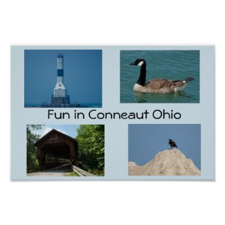 Fun in Conneaut Ohio Poster