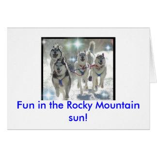 Fun in the Rocky Mountain sun! Card
