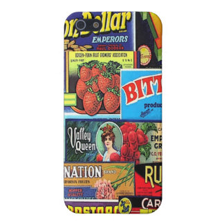 fun labels case for iPhone 5/5S