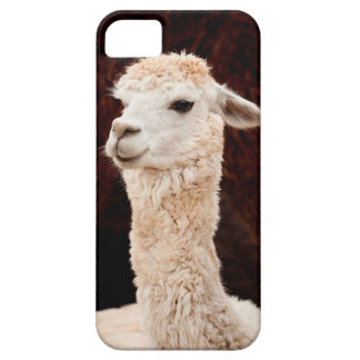 Fun Llama iPhone 5/5S, Barely There case