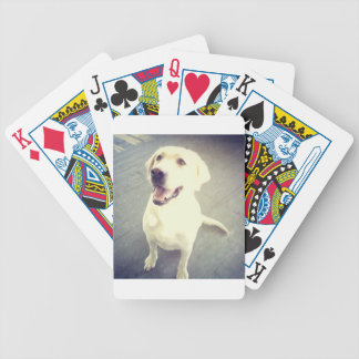 Fun loving yellow Labrador Retriever named Chevy Bicycle Playing Cards
