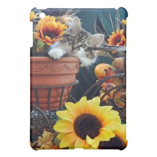Fun Maine Coon Kitty Cat Kitten, Fall Autumn Color iPad Mini Cover
