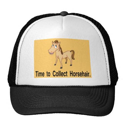 fun merchandise trucker hat