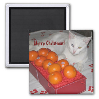 Fun Merry Christmas Magnet! 2 Inch Square Magnet