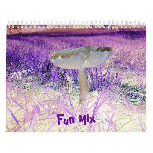 Fun Mix-Multi-Designs-Calendar