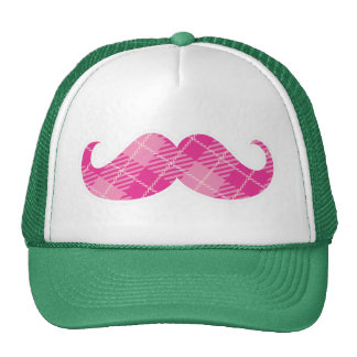 Fun Moustache Hat