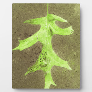 Fun Neon Lime Green Leaf Grunge Background Plaque