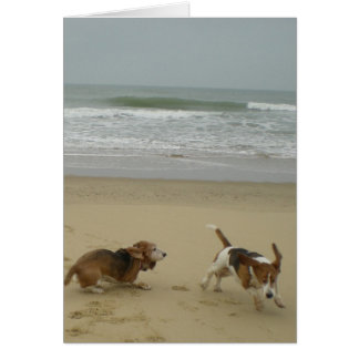 Fun on the beach cards