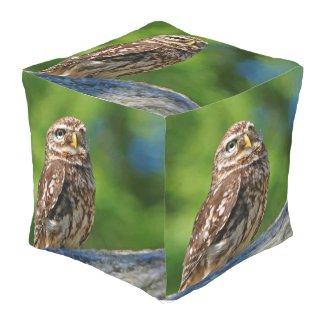 Owl Pouf