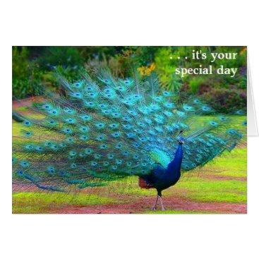 siberianmom Fun Peacock Birthday Card
