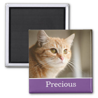 Fun Purple Personalized Pet Photo Magnet