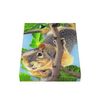 Fun Squirrel in Tree Canvas Print