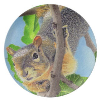 Fun Squirrel in Tree Melamine Plate