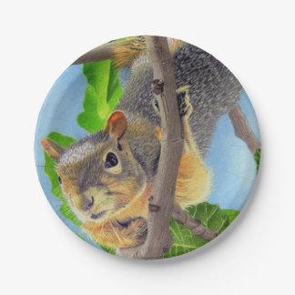 Fun Squirrel in Tree Paper Plate