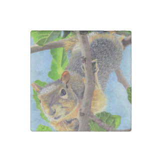 Fun Squirrel in Tree Stone Magnet