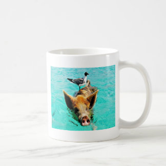 Fun together  staniel cay swimming pig seagull fis coffee mug
