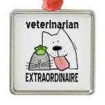 Fun Veterinarian Extraordinaire Metal Ornament