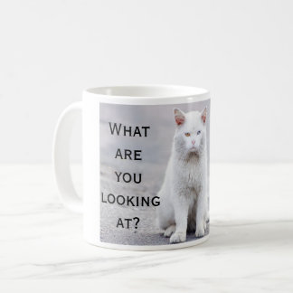 Fun What Are You Looking At Cat Coffee Mug