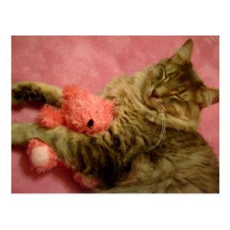 fun with his teddy postcard