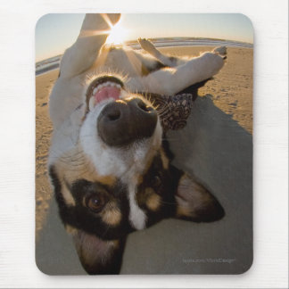 Fun with the Sun Mouse Pad