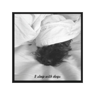 Fun wrapped canvas - I sleep with dogs