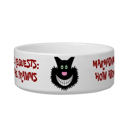 Fun Your Cat Requests! Pet Water Bowls