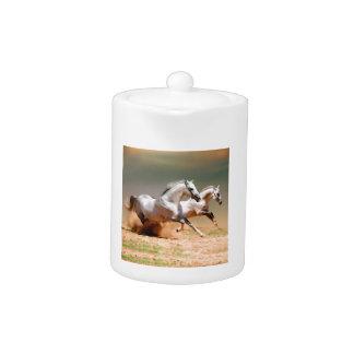 funcionamiento de dos caballos blancos