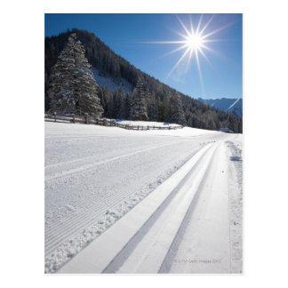 funcionamiento de esquí a campo través preparado tarjeta postal