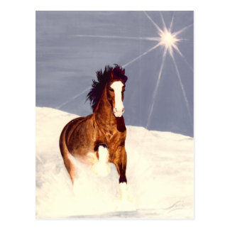 Funcionamiento de la luz de las estrellas tarjeta postal