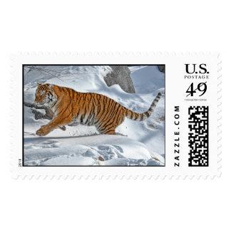 Funcionamiento de la nieve del tigre timbres postales