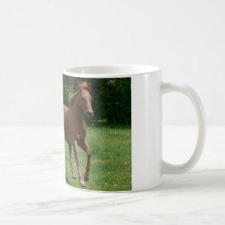 Funcionamiento de la yegua y del potro taza de café