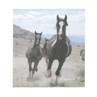 Funcionamiento de los caballos salvajes de Utah Bloc