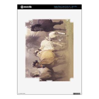 Funcionamiento de los caballos salvajes iPad 3 pegatina skin