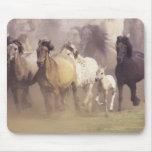 Funcionamiento de los caballos salvajes tapetes de raton