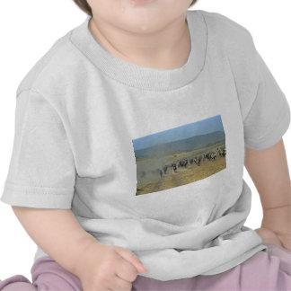 Funcionamiento de los Gnus y de las cebras Camisetas