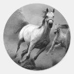 Funcionamiento del caballo pegatinas redondas