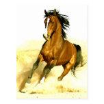 Funcionamiento del caballo postales