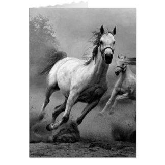 Funcionamiento del caballo felicitacion