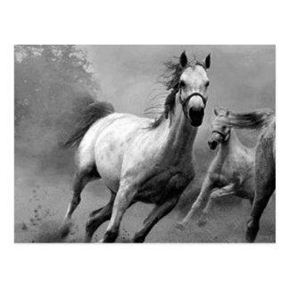 Funcionamiento del caballo postal