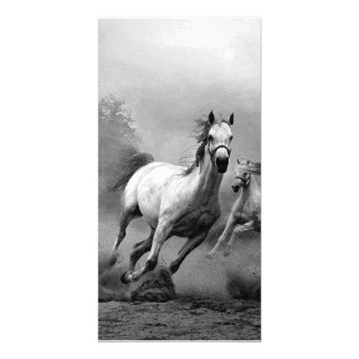 Funcionamiento del caballo tarjetas con fotos personalizadas