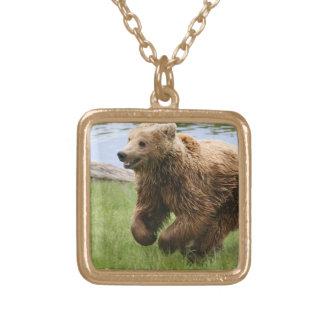 Funcionamiento del oso de Brown Collar Personalizado